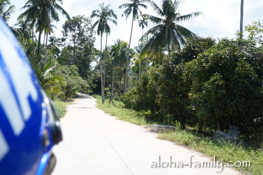 Качество дороги в центре острова нас приятно удивило!