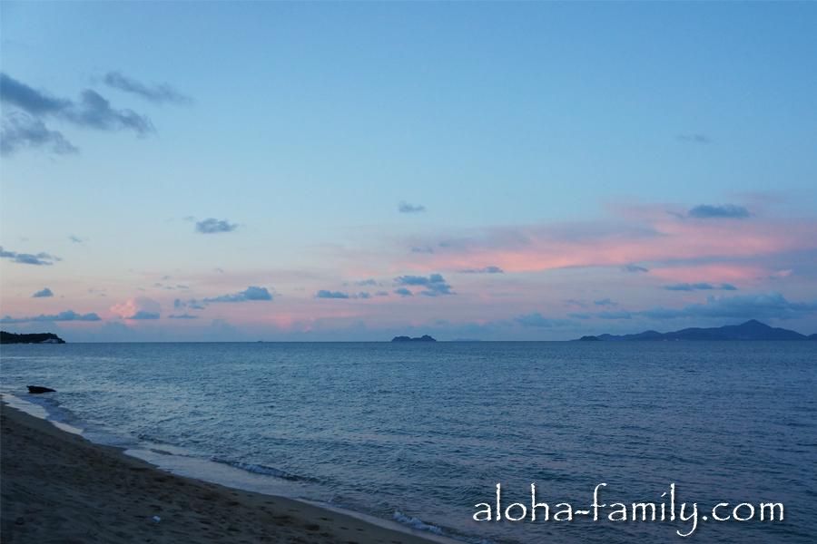 Сегодня мы ездили смотреть закат на Мэнам, где мы опять видели купающегося буйвола)