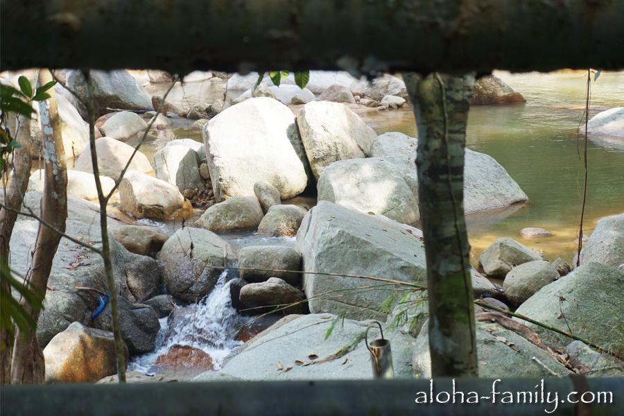 Дорога через джунгли к водопаду Hinlad. Вход за символическую сумму: 2 бата