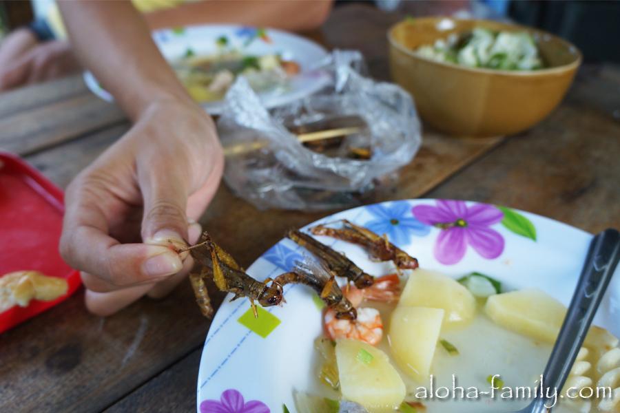 Можно ли есть кузнечиков в Таиланде?