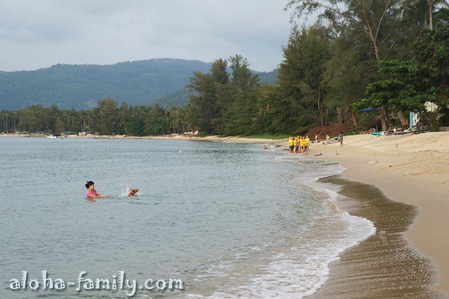 Пляж Тонг Янг - купающаяся собака и пионеры на заднем плане! ))))