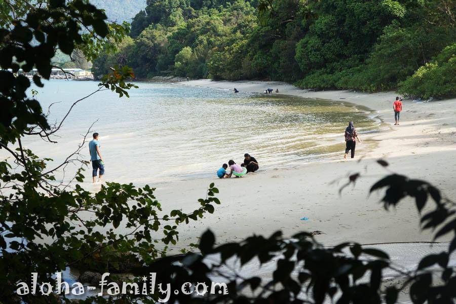 Малайцы что-то собирают у моря во время отлива