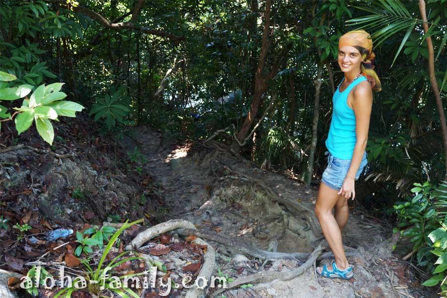 Три километра джунглей позади, и мы надеемся, что скоро мы увидим долгожданный пляж обезьян