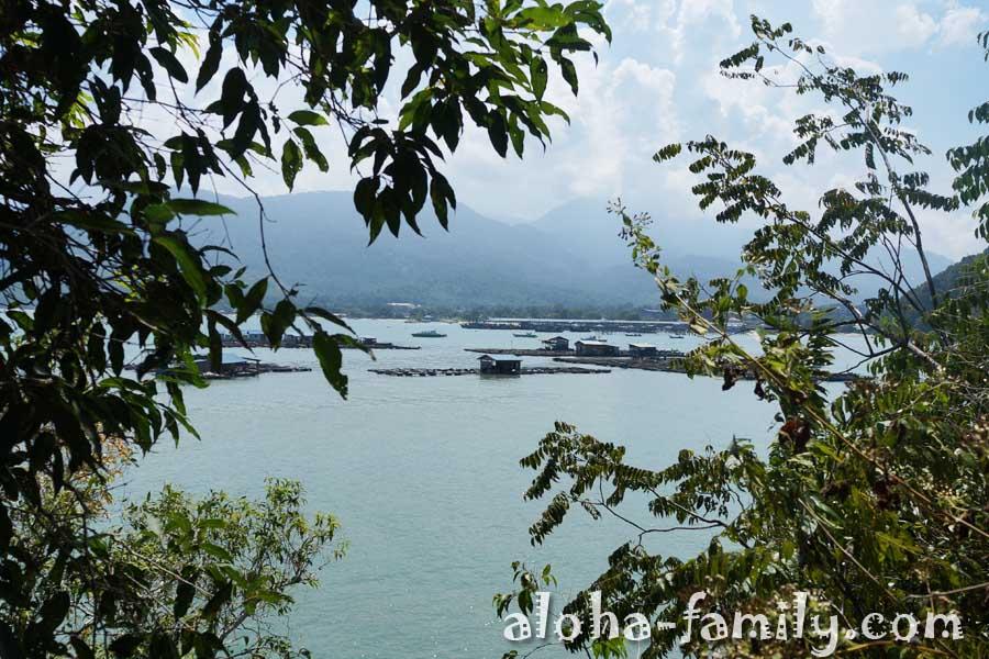 Сквозь заросли видны какие-то островки - похожи на рыбные фермы