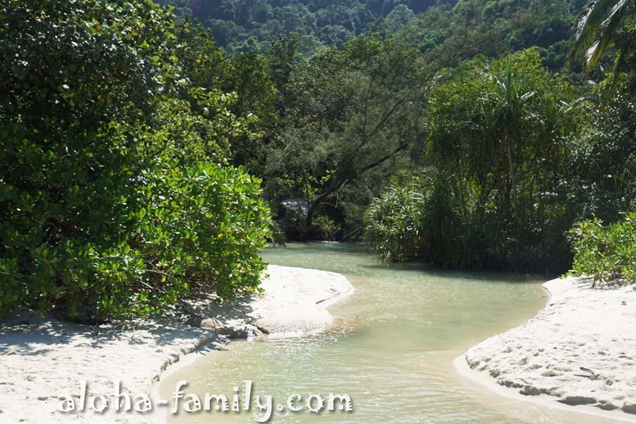 Живописная речка течёт из гор и впадает прямо в Андаманское море на Пляже обезьян