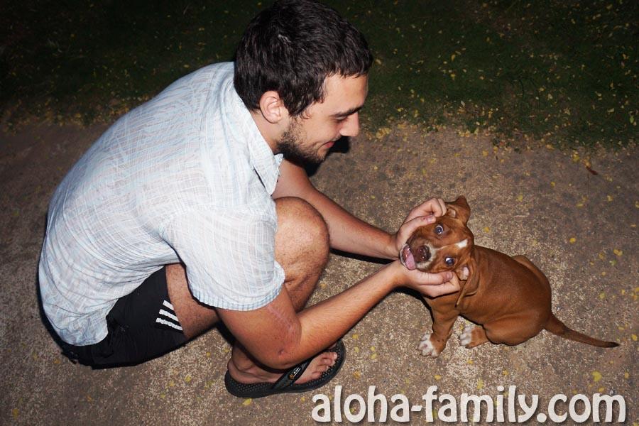 Ещё один прикольный тайский щеночек, которого мы с другом случайно встретили во дворах Лай Плаема))