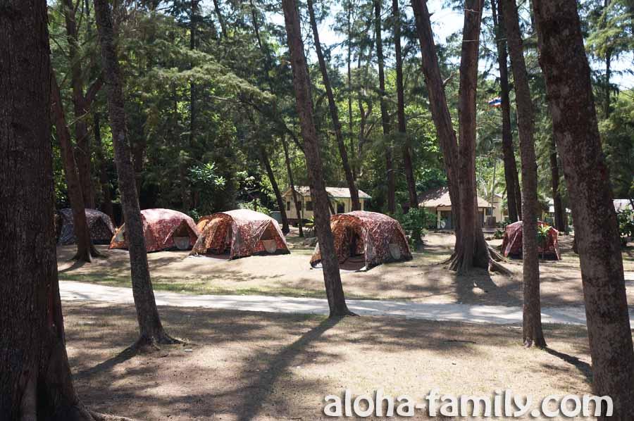 Палатки и домики на Bamboo Island