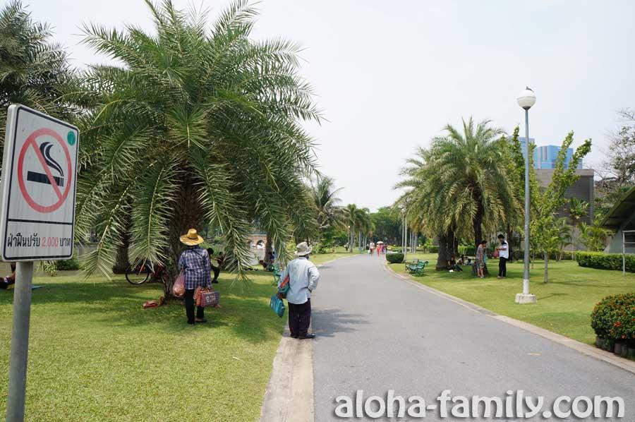 В парках Таиланда курить запрещено - штраф 2000 бат (на фото парк Чатучак)