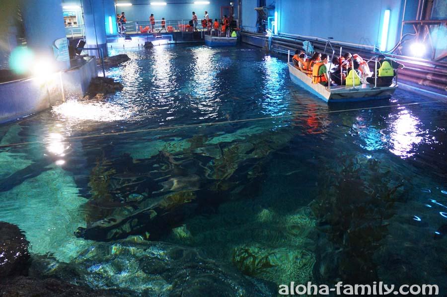 Лодка со стеклянным дном и экскурсия по техническому помещению второго по величине аквариума в ЮВА (после Сингапурского)
