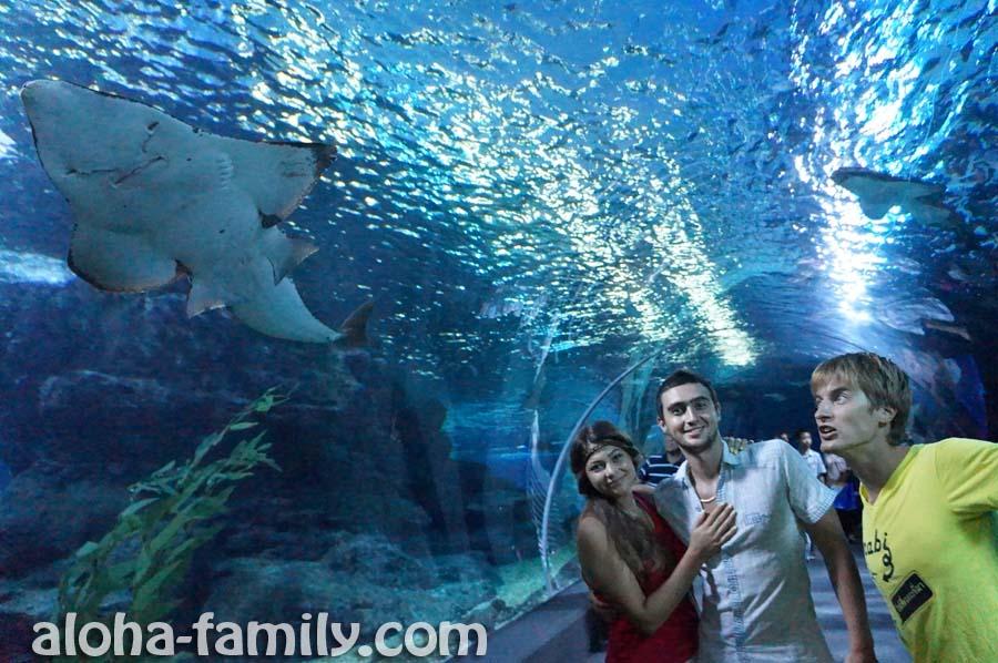 Океанариум в Бангкоке - одно из самых дорогих туристических мест, которое мы посетили