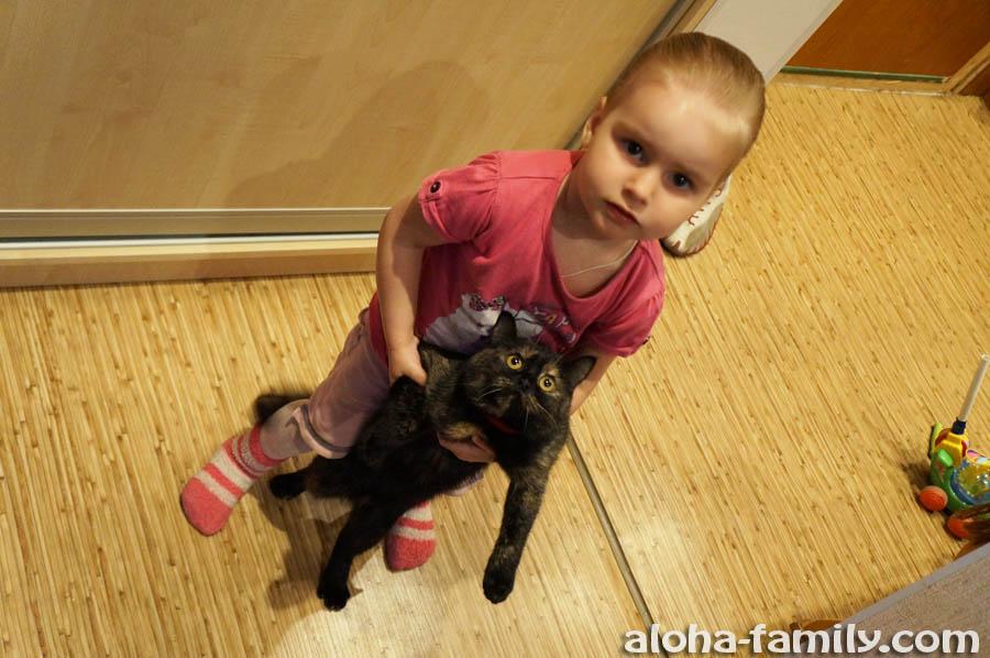 Племянница Настя учит кошку Мурку ходить на задних лапах))