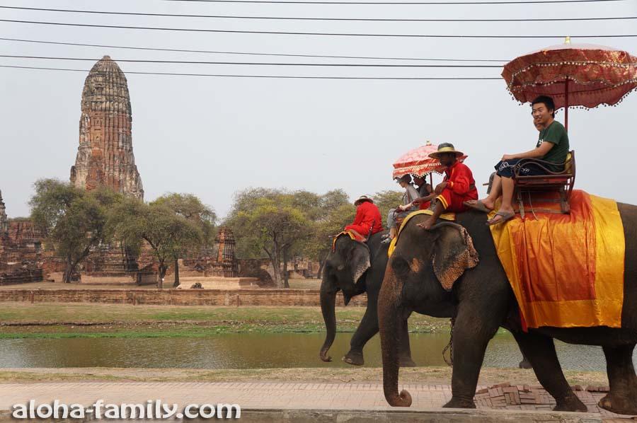 По-моему, даже тротуары здесь сделаны специально с учётом антропометрических данных слонов)))