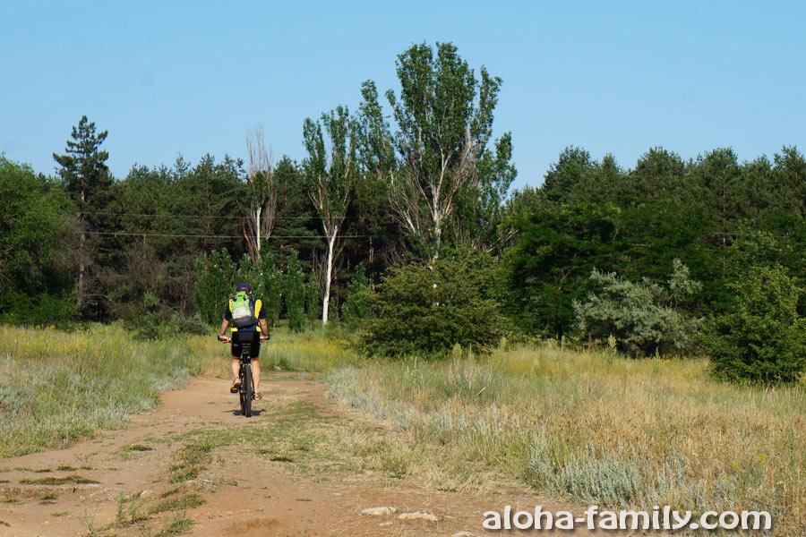 На Хортице есть прокат велосипедов, но многие приезжают со своим велотранспортом
