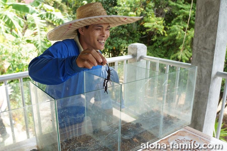 Тайский дрессировщик скорпионов