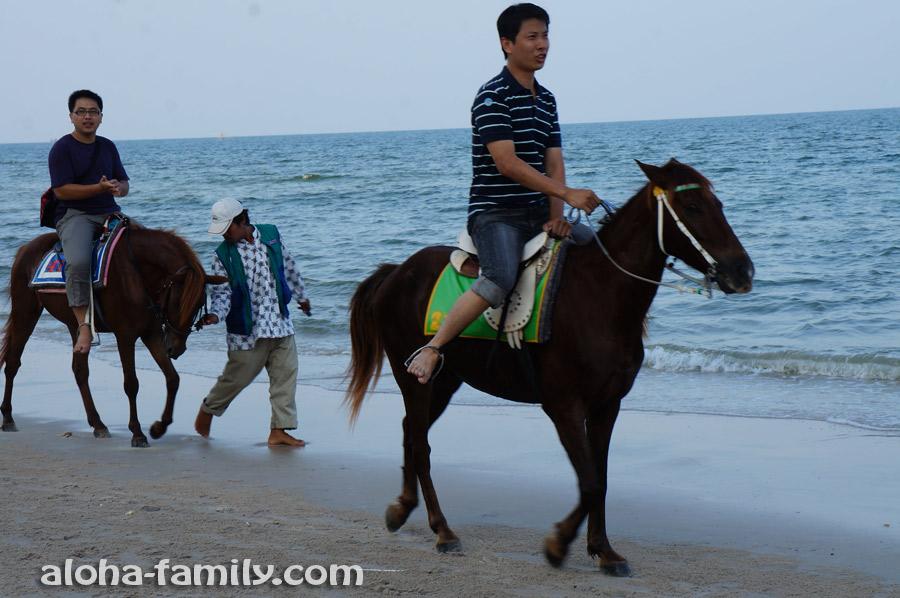 Прогулки на лошадях в Хуа Хине