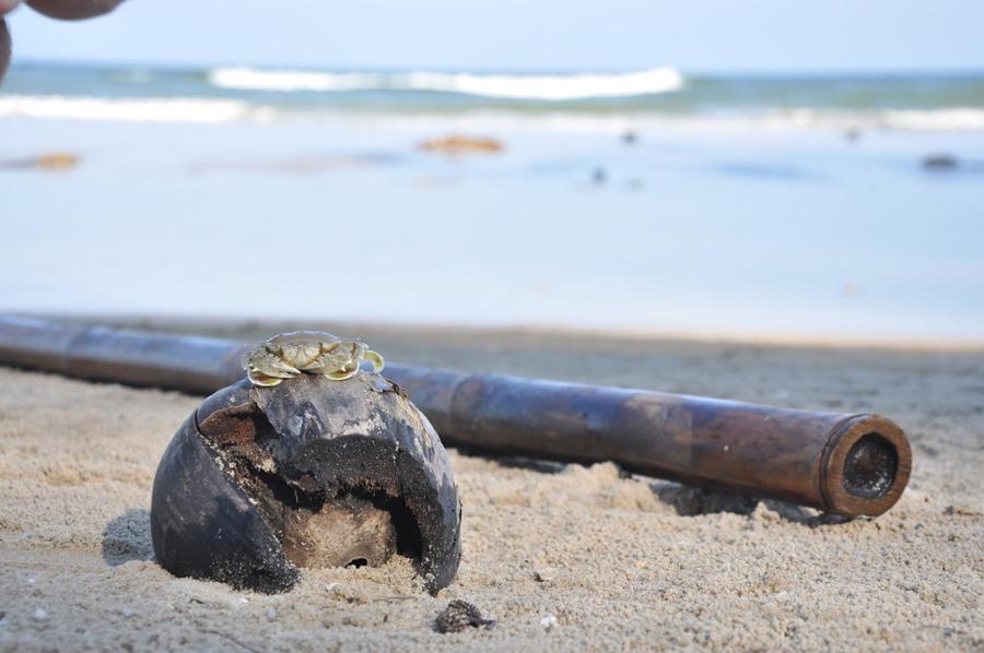 В окрестностях Хуа Хина крабов водится очень много, ведь пляжи довольно малолюдны