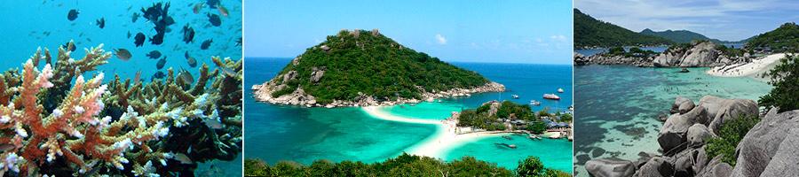 Набираю группу 3-4 человека: в Таиланд своим ходом 5-14 февраля 2014 года