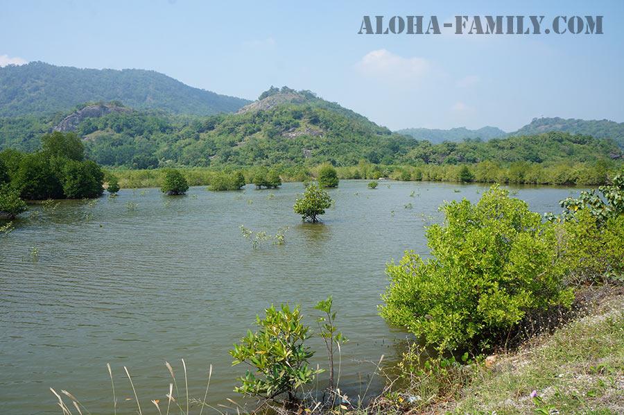 Горы и озёра с редкими птицами