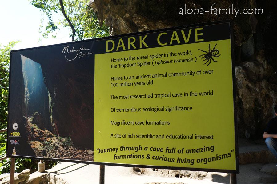 Dark Cave - тёмная пещера Бату