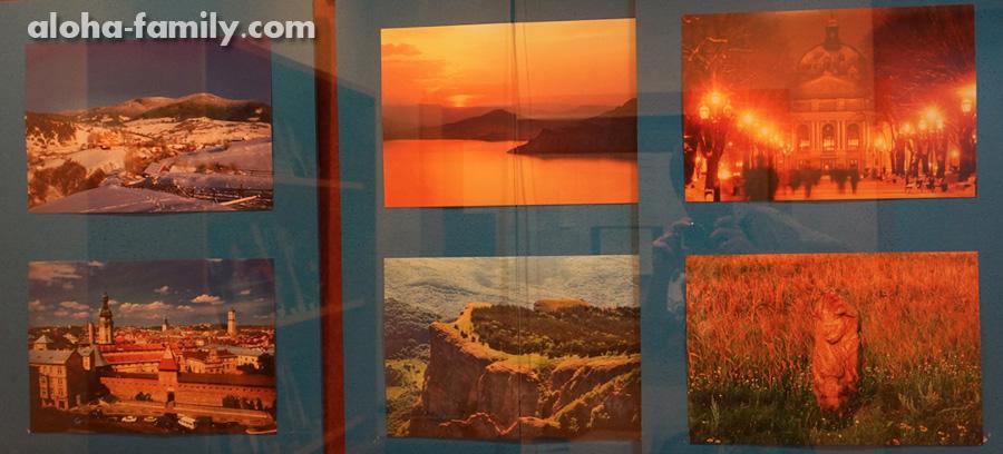 Картины с украинскими пейзажами в нашем посольстве