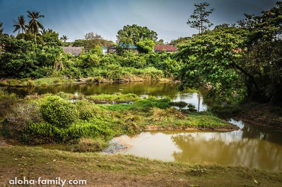 В окне пробегают последние километры Таиланда