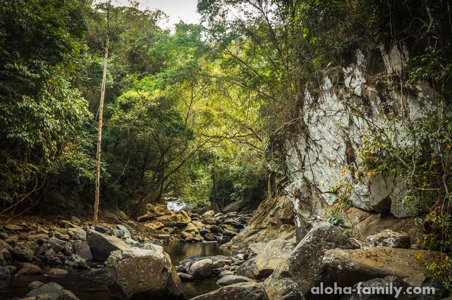 Иногда нужно идти по камням вдоль русла реки, но иногда сбоку сквозь чащу