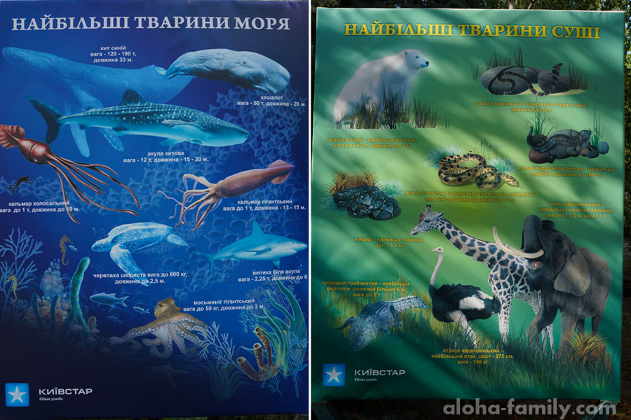 Полезные инфо-плакаты в зоопарке Николаева