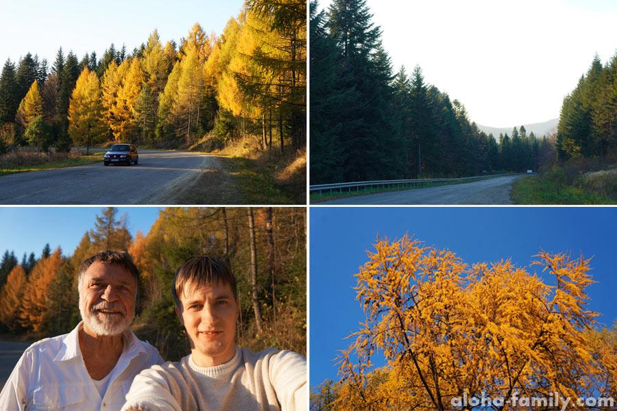 Дорога из Трускавца в Сходницу