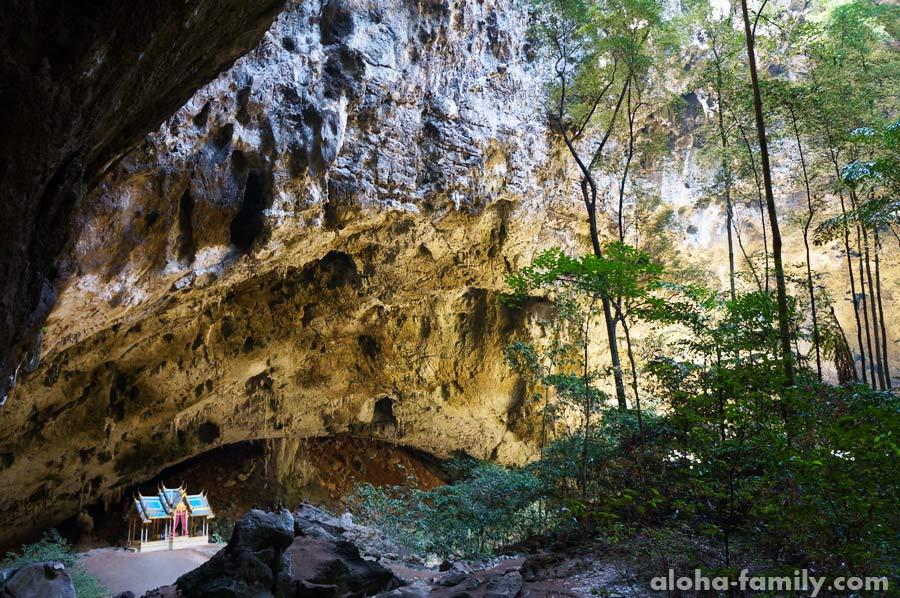 Известняковые стенки пещеры и её растительность