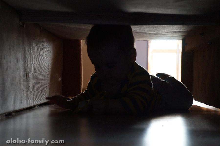 Трускавец, 10 октября 2014 - Оливия научилась прятаться под диваном)))