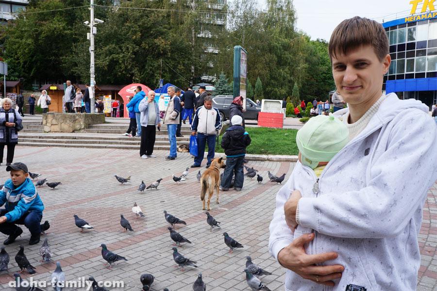 Трускавец, 25 сентября 2014 - смотрим на голубей