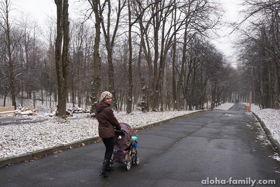 """Трускавец, 27 ноября 2014 - бабье лето """"всё""""... когда-то это должно было закончиться)"""