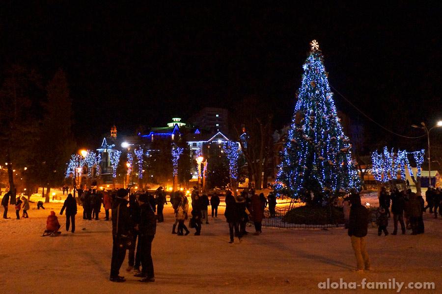 Новогодняя ночь у главной ёлки города