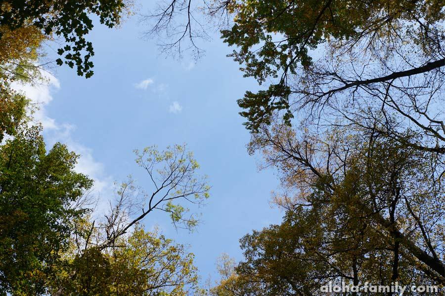 Осеннее небо Трускавца