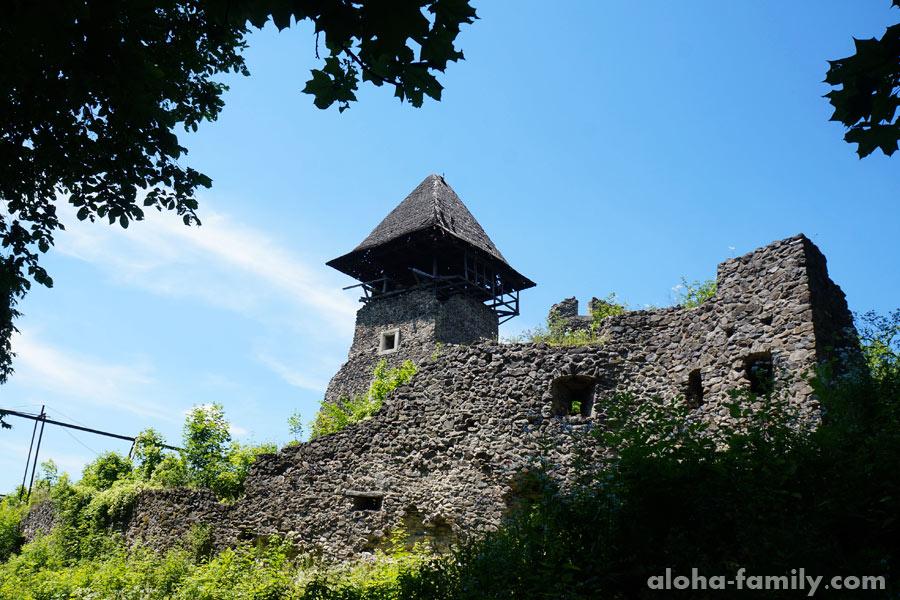 Невицкий замок под Ужгородом