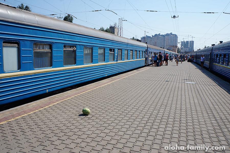 А вот так растут арбузы в Одессе. =) Но если честно, арбузы там и правда растут, но мы забыли попробовать)