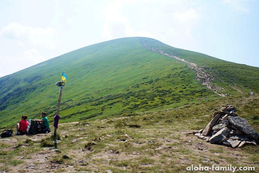 Альпийские луга в Украинских Карпатах