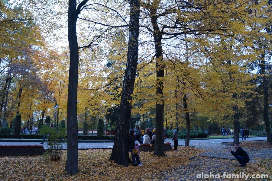 Фотографы под каждым вторым деревом))