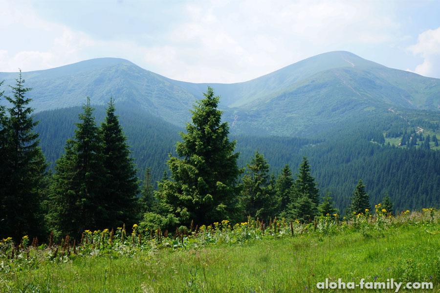 Гора Говерла фото, Украинские Карпаты