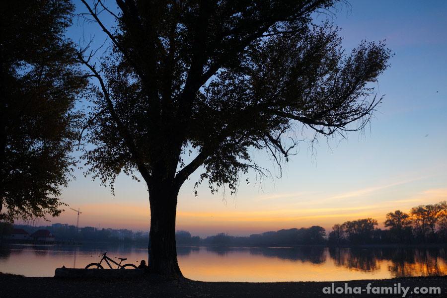 Городское озеро в Ивано-Франковске, ноябрь
