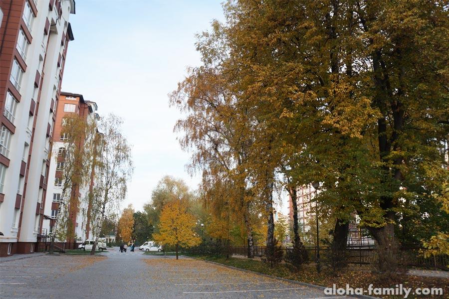 Осенний городской пейзаж... а нет, сельский по ходу)))