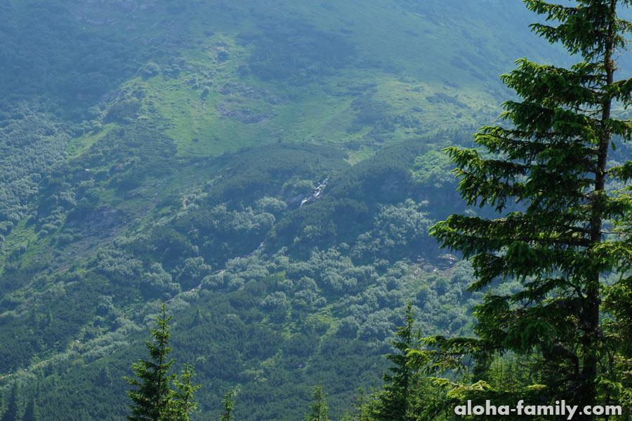 Поход на говерлу, высота 1600 метров и Прутский водопад издалека