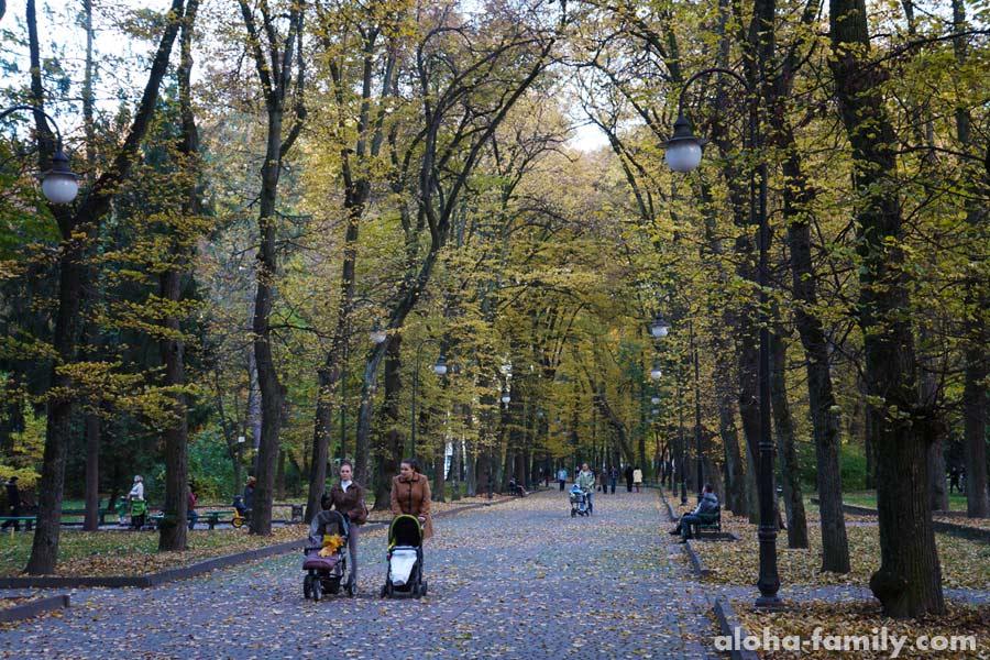 Центральный Парк, И-Ф