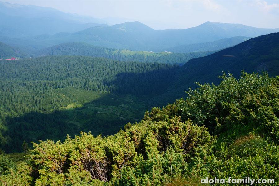 Фотографии Карпат почти с самой вершины Говерлы