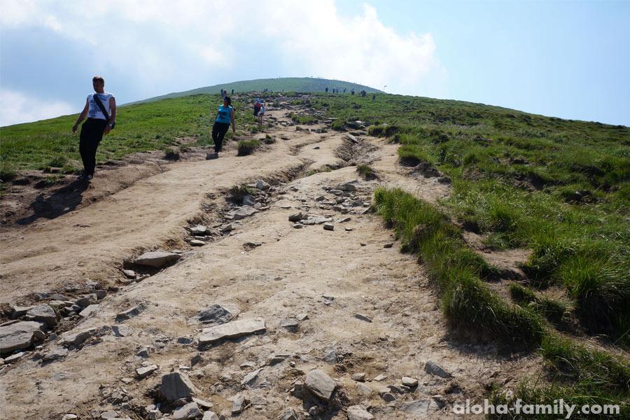 Самая высокая вершина Карпат уже совсем рядом!