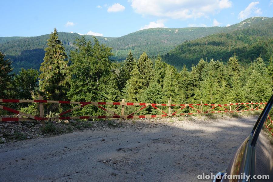 Недавний обвал дороги исправили тяп-ляп... 50 метров асфальта забыли восстановить, а ограда похожа на картонную