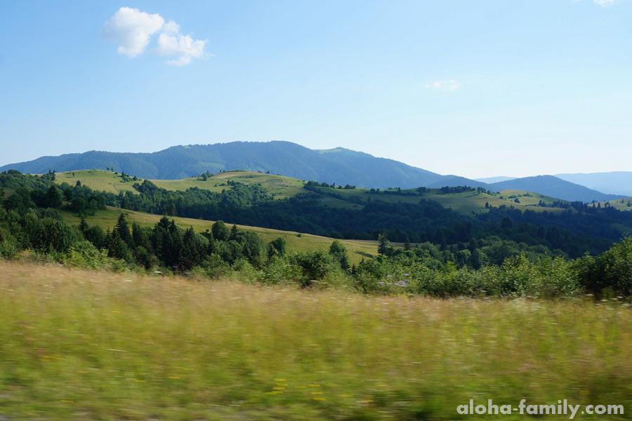 Карпатские пейзажи вдоль дороги вдохновляют
