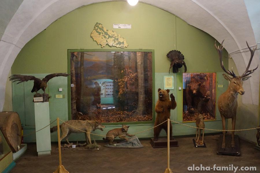 Музей в Ужгородском замке