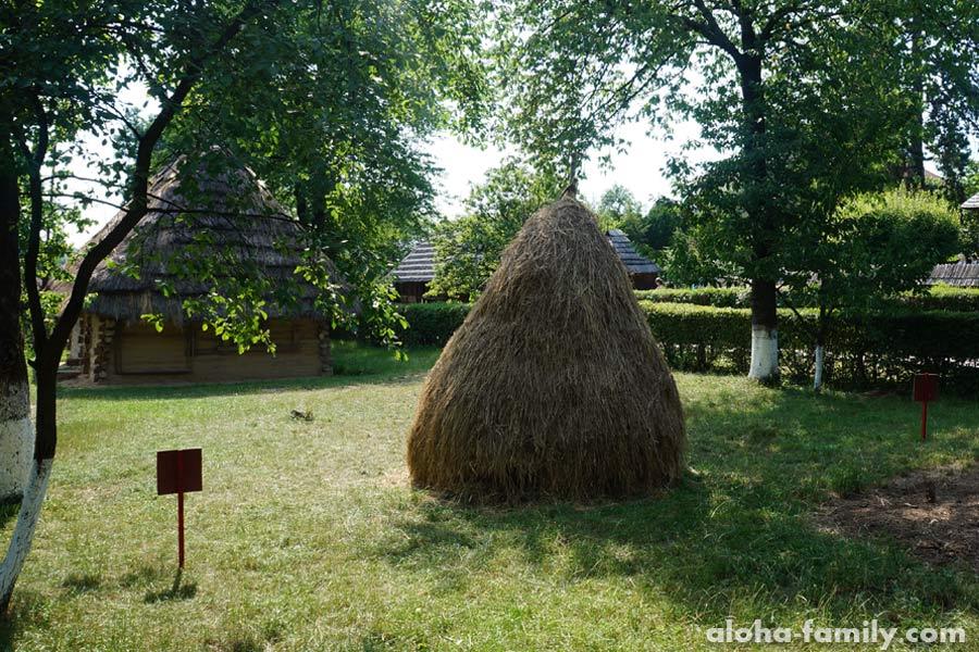 Закарпатское сено в качестве экспоната