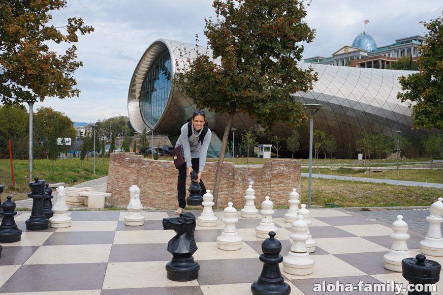 Шахматы в парке Рике